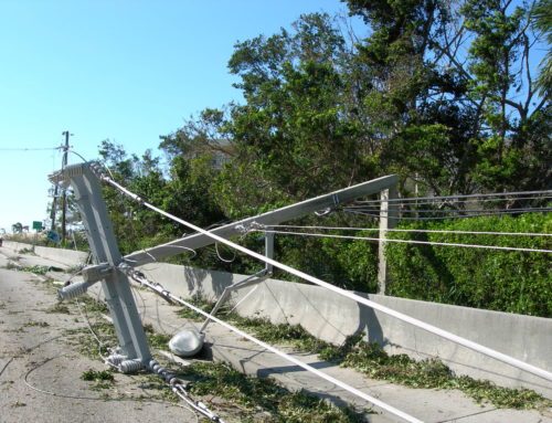 Safety and Downed Power Lines After a Storm